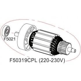 Rotor complet 220V DS503 RASOR F50319CPL