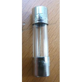 Fusible 1.25A OPTIMA702 RASOR réf F70210F01